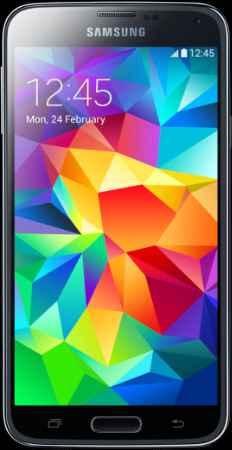 Купить Samsung G900FD Galaxy S5 Duos Black