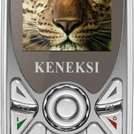 Купить Keneksi Q3 (серебристый)