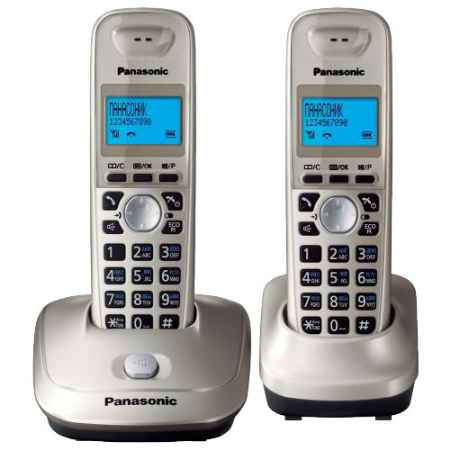 Купить Panasonic KX-TG2512RUN Platin